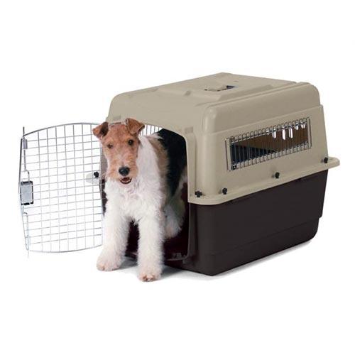 Guacal Pequeño para Perro
